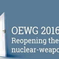 UNFOLD ZERO at the UN nuclear disarmament working group